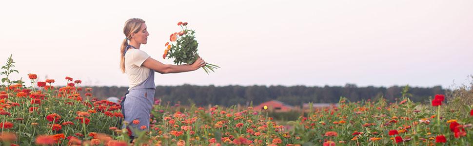 Flower; arrangement; floral; arranging; bouquet; garden; farm; garden; florist; mothers; day; gift