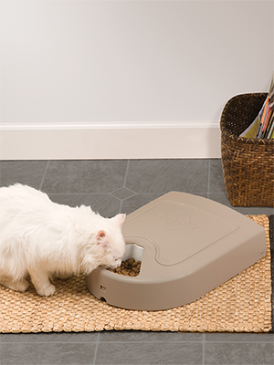 PetSafe, automatic feeder, cat, pet, door, food dispenser, bowl, food, auto, feed, container, home