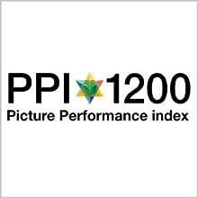 PPI 1200