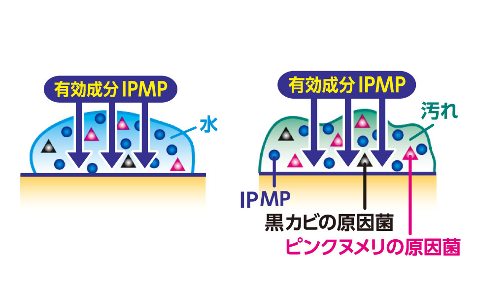 IPMP、除菌