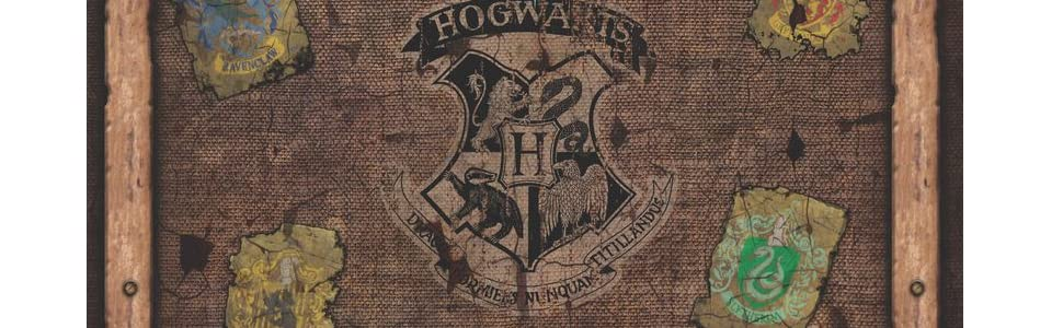 Hogwards Battle