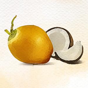 himalaya body butter;body butter for men;body butter sri sri;himalaya nourishing skin cream;cocosoul