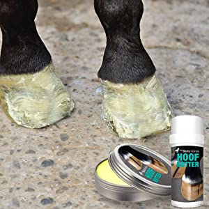 horse hoof moisturizer