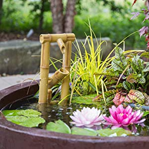 Add An Optional Aquascape Bamboo Fountain Or Spitter Fountain For The  Soothing Sound Of Falling Water.