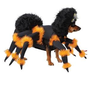 Arachnaphobia, Halloween Dog Costume, Halloween Spider Costume, Funny Pet Costume, Funny Dog Costume