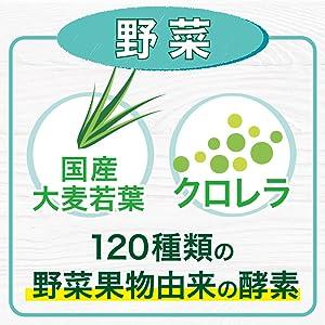 国産 大麦若葉 クロレラ 野菜 果物 酵素 青汁 スベルティ