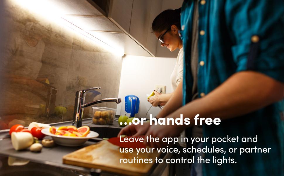 Hands free voice kitchen