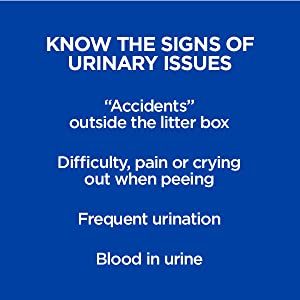 know the signs of urinary issues