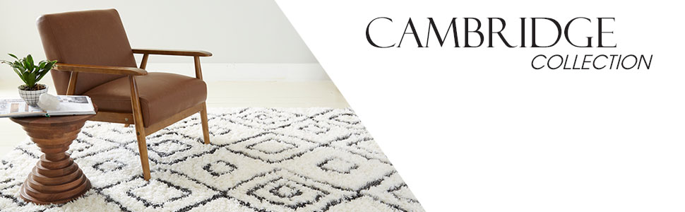 shag rugs, shag rugs, boho shag, best area rugs