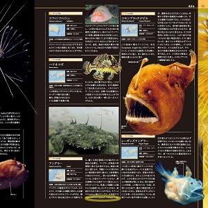 海洋大図鑑3