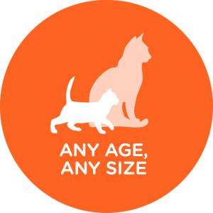 ANY AGE, ANY SIZE