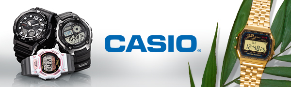 Casio Header