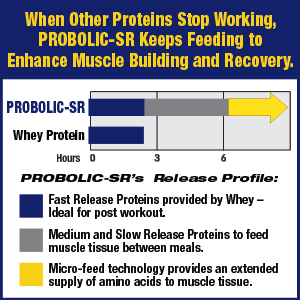 sustained release muscle feeder anabolic anti-catabolic protein powder drink mix