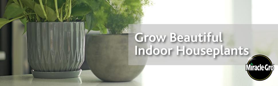 Grow Beautiful Indoor Houseplants