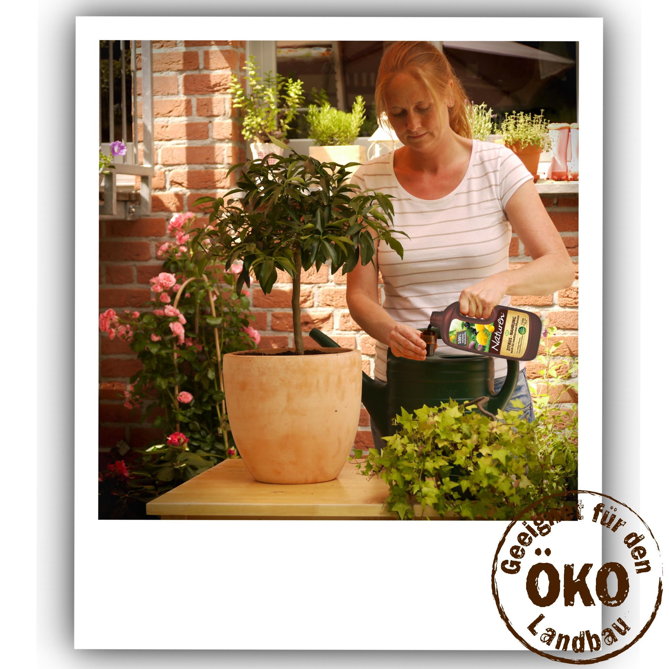 naturen bio zitrus und mediterrane pflanzen nahrung organisch mineralischer fl ssigd nger aus. Black Bedroom Furniture Sets. Home Design Ideas