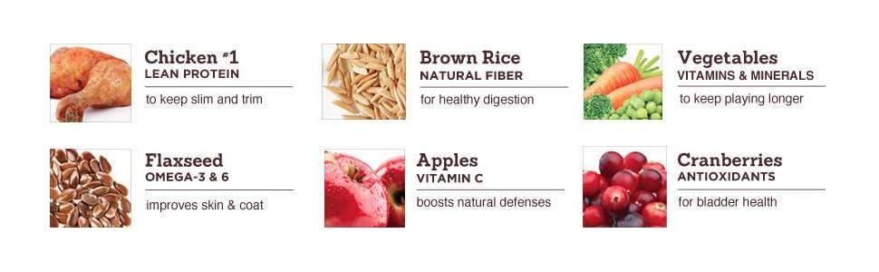 100% Balanced Nutrition, Guaranteed