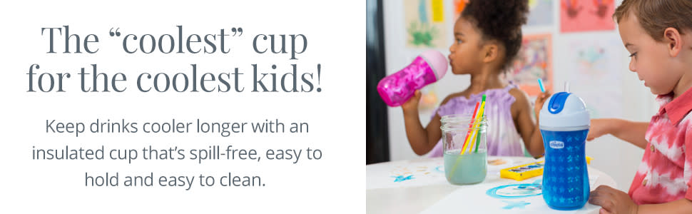 Insulated Flip-Top Straw Cup