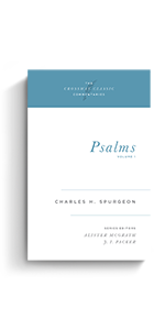 Psalms, Volume 1 Commentary