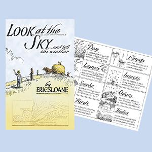 Weather, Sky Sloane Illustration