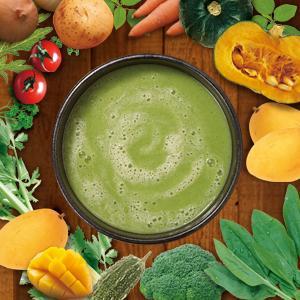 スープ インスタント 野菜 緑 スムージー ホットスムージー