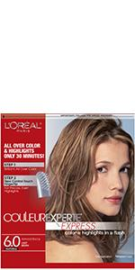 loreal frost and design instructions