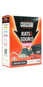 RATS SOURIS POSTE APPATAGE
