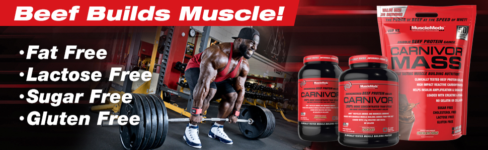 increase muscle beef protein size workout supplement muscle carnivore isolate chocolate shake