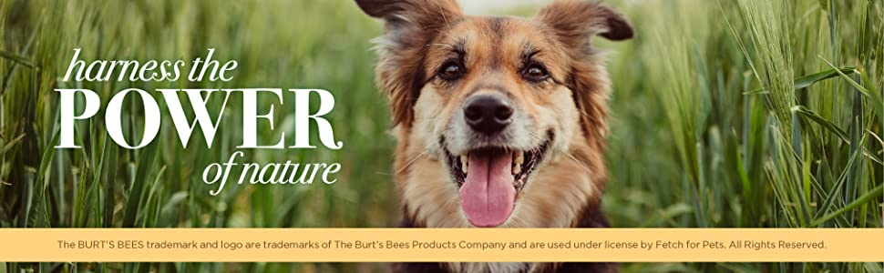 burt's bees for pets