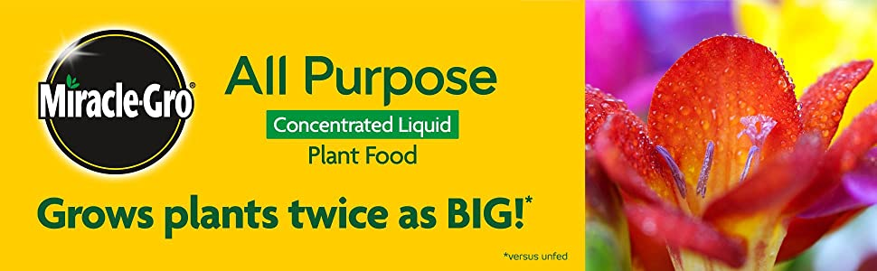 Miracle-Gro All Purpose Concentrated Liquid Plant Food - Grows plants twice as big!