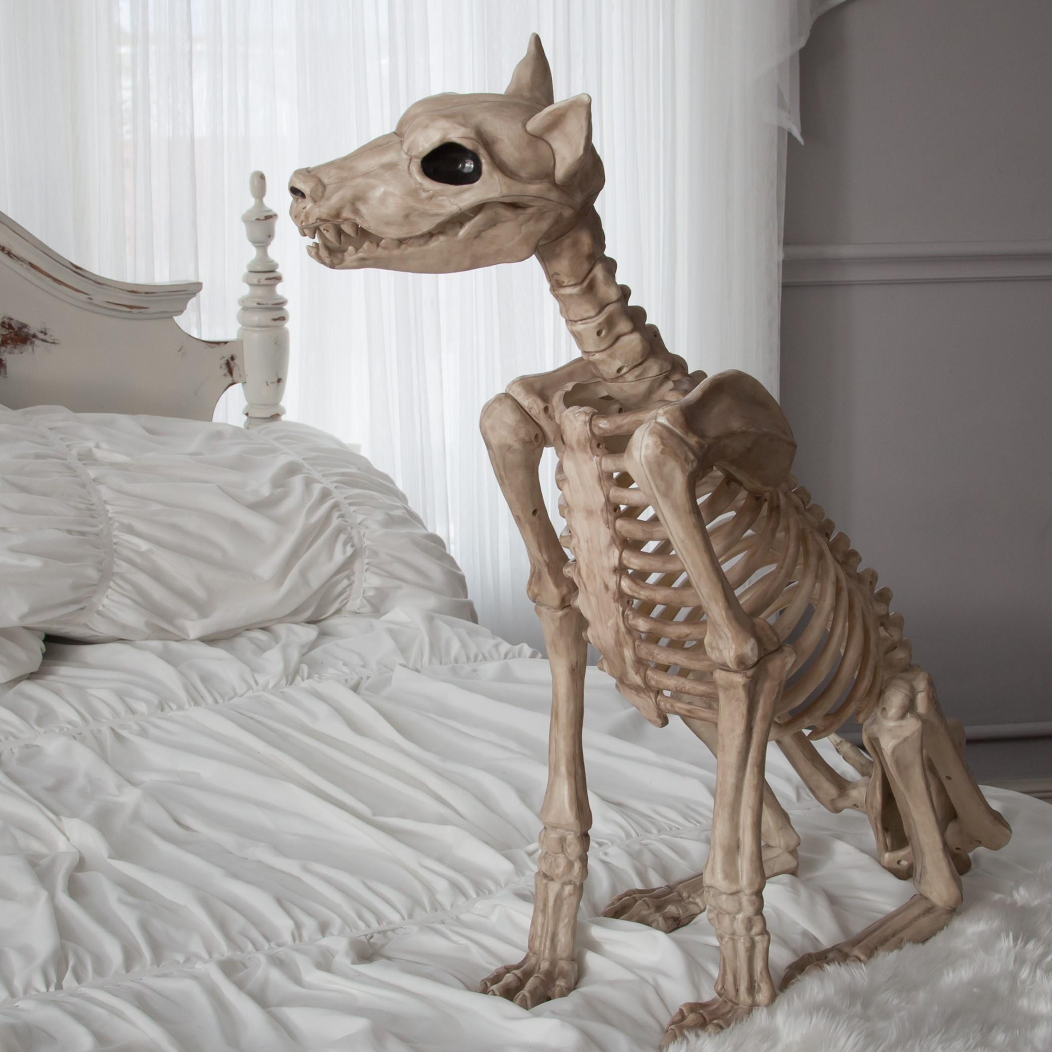 Amazon.com: Crazy Bonez Skeleton Dog - Badger Bonez: Toys