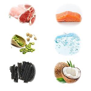 ドッグフード 安心 安全 無添加 グルテンフリー グレインフリー 乳酸菌 人気 ランキング プレミアム