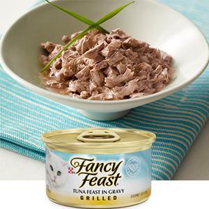 High Quality Balanced Premium Wet Kitten Food