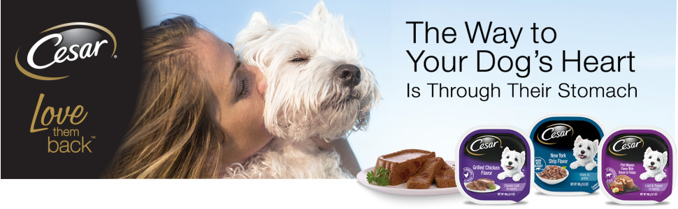 The Way to Your Dog's Heart Is Through Their Stomach, Cesar Soft Wet Dog Food