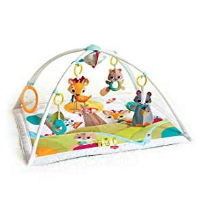 Baby activity gym, baby gym, tummy time, play mat, Tiny Love