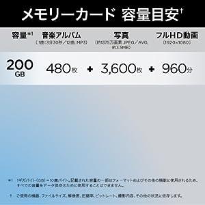 200GB Micro SD