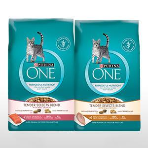 Crave Dry Cat Food Amazon