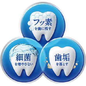 予防歯科 3つのポイント