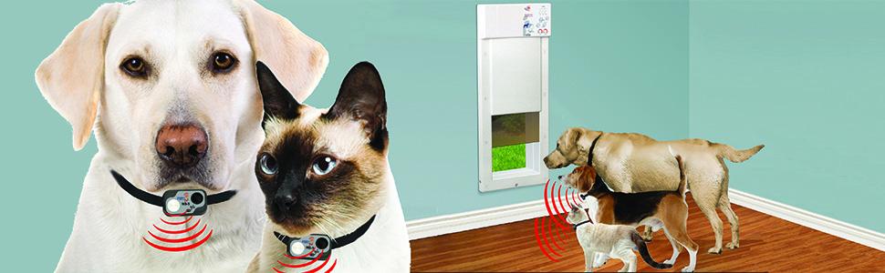 power pet door,  electronic dog door
