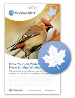 Amazoncom Window Alert Maple Leaf Decal Bird Window Alert - Window alert decals amazon