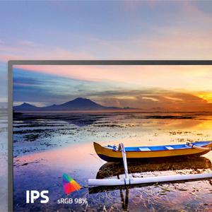 IPS computer monitor
