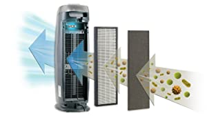air purifier for dust air purifier for mold air purifier for smokers