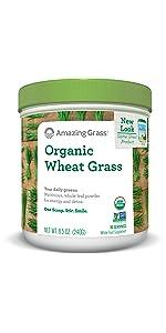 Wheat Grass Barley Alfalfa
