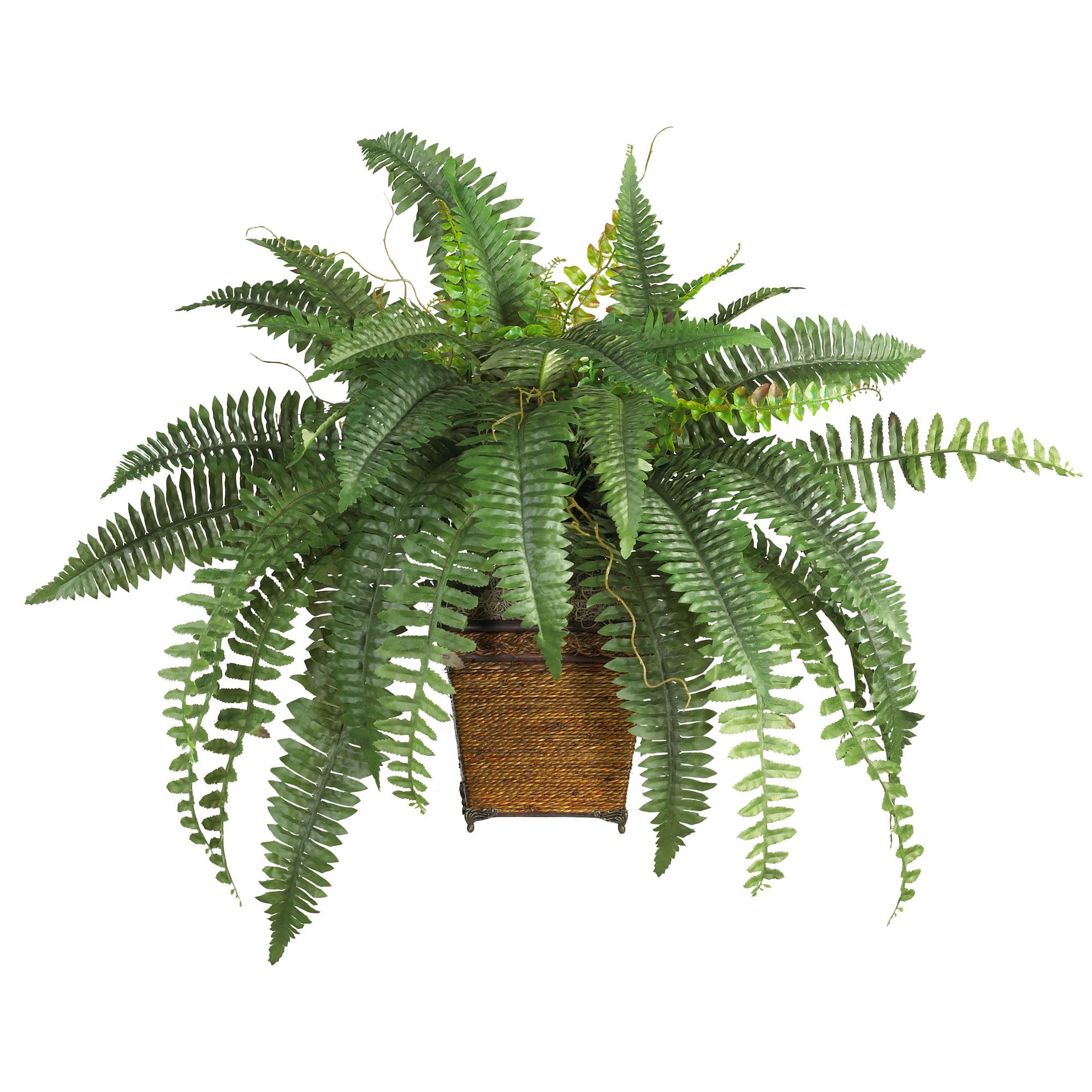 Amazon.com: Nearly Natural 6549 Boston Fern with Wicker ...