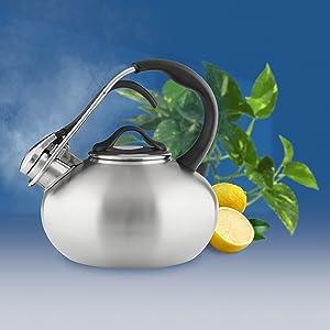 award-winning ADEX Moma teakettle pot stainless tea coffee whistle trigger handle ergonomic design