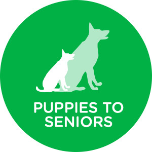 Puppies to Seniors