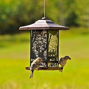 feeding bird station denny international stabiliser outdoor ground for feeder garden dp stand wild feet spikes