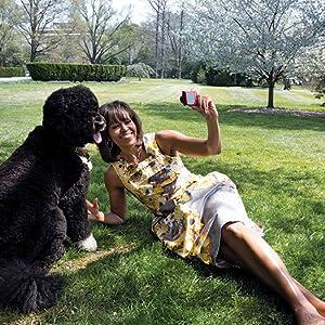 犬とミシェエル