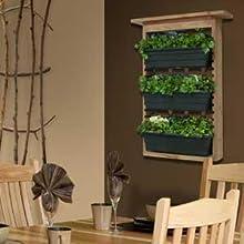 Amazon Com Algreen 34002 Garden View Vertical Living