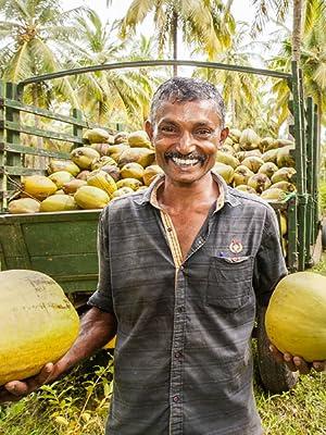 Kokosnuss Sri Lanka Rapunzel Naturkost fairer Handel biologischer Anbau