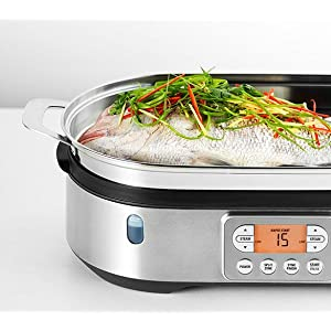 Best Electric Steamer